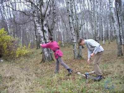 Левитация дров